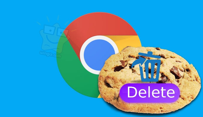 حذف كوكيز لموقع معين فى متصفح جوجل كروم