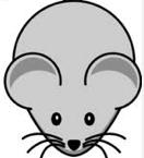 حل مشكلة الماوس سريع جدا فى ويندوز ٨ ويندوز ٧ بالصور   mouse acceleration windows 8 fix