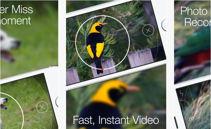 برنامج تصوير الفيديو للايفون التقاط الصور اثناء تسجيل Blink